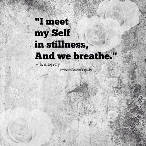 meet myself