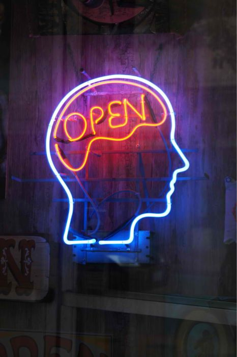 open mind3