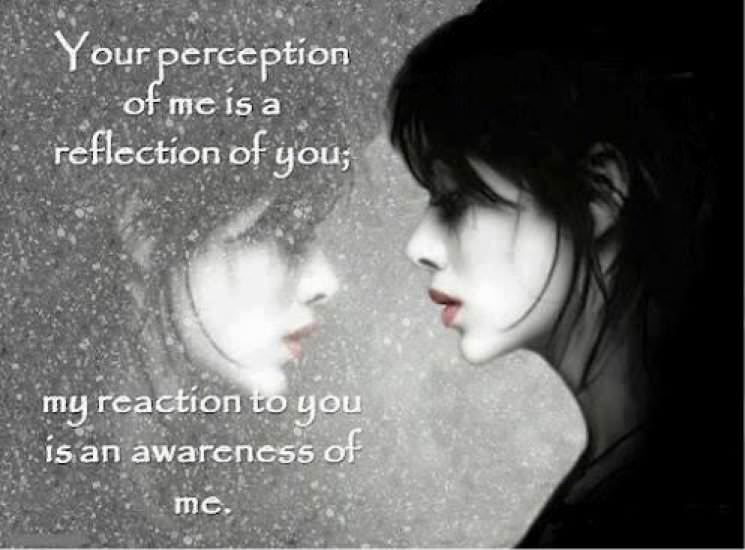 perception9