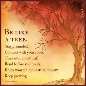 tree love2