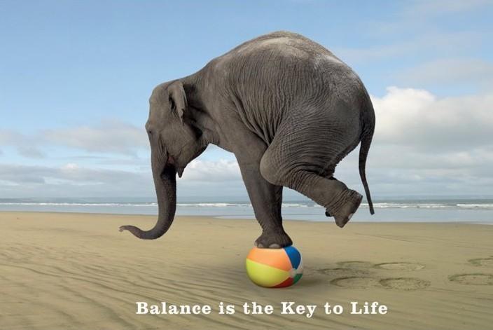 balance-webinar