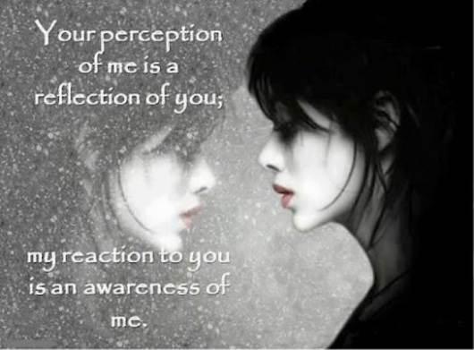 perception9
